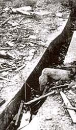 Nagasaki Pulverized