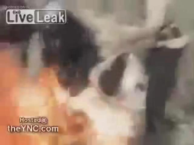 21_extremely_graphic_Al_Nusra_Fsa_terrorists_burning_kurdish_people_in_syria