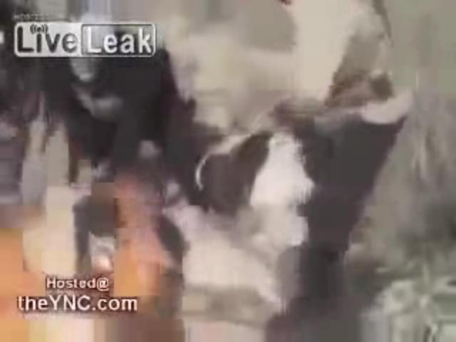 21_extremely_graphic_Al_Nusra_Fsa_terrorists_burning_kurdish_people_in_syria2