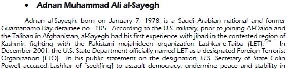 al sayegh1