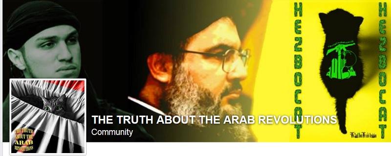 arab revolutions